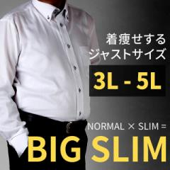 【大きいサイズ】シルエットが綺麗 メンズ 長袖 ワイシャツ デザインシャツ ビッグサイズ 3L 4L 5L /sun-ml-sbu-1132【HC】