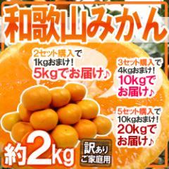 """【送料無料】""""和歌山みかん"""" 訳あり 約2kg 2セット購入で1kg、3セットで4kg、5セットで10kgおまけ【予約 11月下旬以降】"""