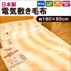 【送料無料】日本製 洗える 電気敷き毛布 ダニ退治機能&室温センサー付き 約180×85cm ベージュ ( 敷きパッド 毛布 電気毛布 )