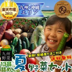 【送料無料】九州野菜セット (たまご付)九州野菜13品ベストセレクション九州の美味しい野菜をタマチャンショップが選りすぐりでたっぷ