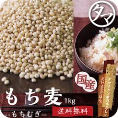 【送料無料】もち麦1kg (国産・無添加・28年度産)もっちりプチプチとした食感と食物繊維が豊富!
