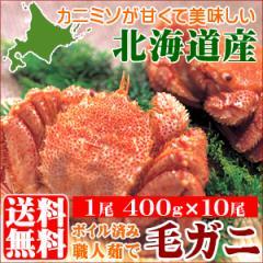 送料無料 北海道産 毛ガニ 4キロ(1尾 400g×10尾) 4kg【4キロ 毛蟹 毛がに 北海道産 直送 姿 ボイル済み キロ】