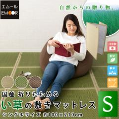 国産 折りたためる い草敷きマットレス シングルサイズ/100×210cm 日本製  イグサエムール