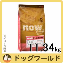 NOW FRESH グレインフリー フィッシュアダルト 11.34kg 【ドッグフード】