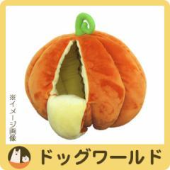 ペッツルート ニャンとももぐる実 かぼちゃ