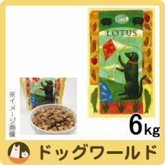 ロータス アダルト ドッグ ラムレシピ 6kg ★ポイント10%還元★