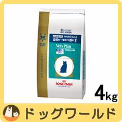 ロイヤルカナン ベッツプラン 猫用 準療法食 メールケア 4kg