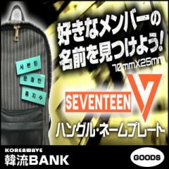 【送料込み】 SEVENTEEN (セブンティーン) グッズ - ハングル ネームプレート (Name Plate) 名札 なふだ