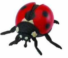 collecta (コレクタ) 昆虫 テントウムシ フィギュア おもちゃ