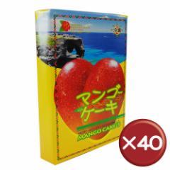 【送料無料】マンゴケーキ(小) 8個入 40箱セット|取り寄せ|沖縄特産品|ギフト[食べ物>スイーツ・ジャム>ケーキ]