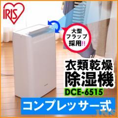 除湿機 コンプレッサー式 DCE-6515 アイリスオーヤマ 除湿器 コンパクト 衣類乾燥 小型 衣類乾燥除湿機 梅雨 湿気 室内物