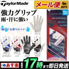 【メール便選択可】 Taylormade テーラーメイド ゴルフ  CBZ99 TM ニューインタークロス II グローブ