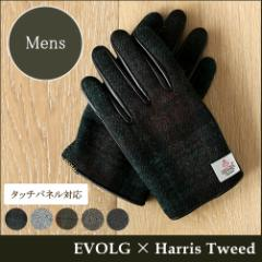EVOLG ハリスツイード 手袋 / メンズ LET-2351 SIR エヴォルグ Harris Tweed スマートフォン対応 防寒 革 グローブ チェック チェック柄