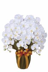 アートフラワー 造花 光触媒 光の楽園 エレガント胡蝶蘭W 452A80 2017年版【送料無料】