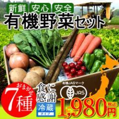 日本の有機野菜セット 旬のおまかせ7種類 全国ご当地生産者のこだわり有機栽培