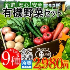 日本の有機野菜セット 旬のおまかせ9種類 全国ご当地生産者のこだわり有機栽培
