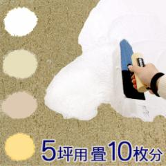 ◎【送料無料】簡単 練り漆喰 [5坪用/畳10枚分] 20.0kg (A436-SET-CP)
