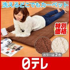 洗えるどこでもあったかカーペット 日テレshop(日本テレビ 通販 ポシュレ)