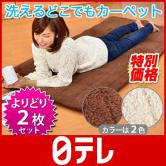 洗えるどこでもあったかカーペット よりどり2枚セット 日テレshop(日本テレビ 通販 ポシュレ)