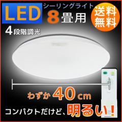 【送料無料】オーム電機 省スペースLEDシーリングライト 8畳用 LE-Y8DG 06-0184