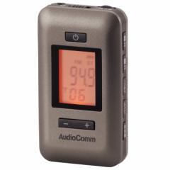 AudioComm イヤホン専用DSP AM/FM 2バンド 携帯 ポケット ワイドFM 補完放送 重低音強調 RAD-P187N 07-7343 OHM オーム電機