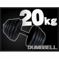 ダンベル 【20kg×1個】 〔筋トレグッズ〕