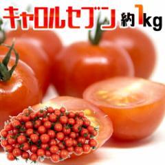 """フルーツミニトマト """"キャロルセブン"""" 約1kg 和歌山産【予約 11月以降】"""