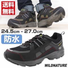 即納 あす着 送料無料 スニーカー ローカット メンズ 靴 WILD NATURE 876-01/876-02