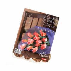 (観葉)チューリップ球根 花のある暮らし。人気上昇中品種シリーズ ミスエレガンス 10球詰(1袋)
