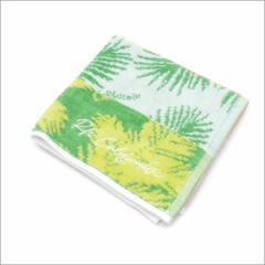 (2016新作・新品)Ron Herman(ロンハーマン)  Beach Hand Towel (ハンドタオル)  GREEN 290-003956-015+(グッズ)