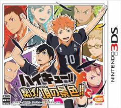 中古ゲーム/ 3DS ソフト / ハイキュー!!繋げ!頂の景色!! CTR-P-BHQJ 2500円以上送料無料