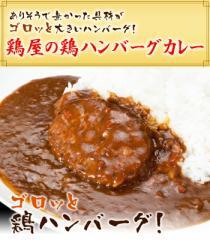【メール便 送料無料】焼き鳥屋が作る鶏ハンバーグカレー お試し 3パックセット! 訳あり/話題