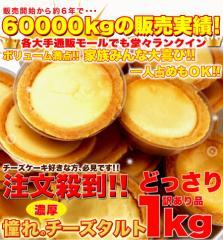 【送料無料】【同梱不可】【メガ盛り】【訳あり】濃厚チーズタルトどっさり1kg (SM00010002)