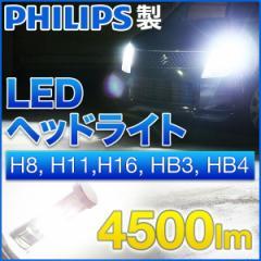 PHILIPS LED ヘッドライト H8 H11 H16 HB3 HB4