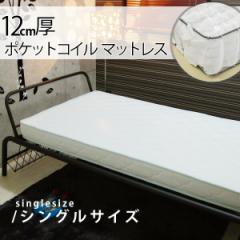 12cm厚 ポケットコイルマットレス/シングルサイズ(MATTRESS 薄型マットレス スプリングマットレス ロフトベッド 収納付きベッド)【
