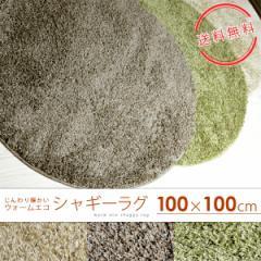 シャギーラグマット 100cm×100cm(円形) ラグ カーペット シャギー 吸湿発熱 温感 ウォームエコ スミトロン 床暖対応 ホットカーペット