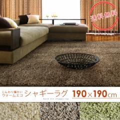 シャギーラグマット 190×190cm(約2畳) ラグ カーペット シャギー 吸湿発熱 温感 ウォームエコ スミトロン 床暖対応 ホットカーペット