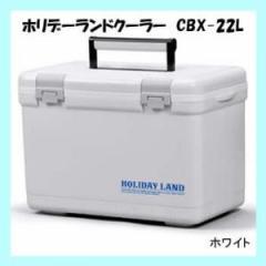 クーラーボックス 小型 伸和 ホリデーランドクーラー CBX-22L ホワイト