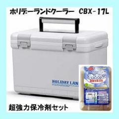 クーラーボックス 伸和 ホリデーランドクーラー CBX-17L ホワイト 超強力保冷剤セット