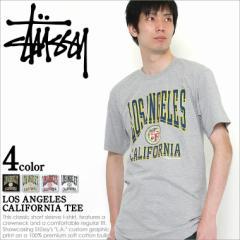 ステューシー STUSSY Tシャツ メンズ 半袖 ストリート 半袖tシャツ 大きいサイズ メンズ Tシャツ