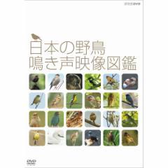 日本の野鳥 鳴き声映像図鑑(DVD)   NSDS20706N