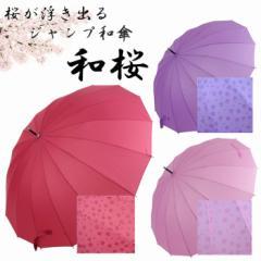 傘 レディース 16本骨 ジャンプ傘 長傘 55cm 雨に濡れると桜が浮き出る 和桜 雨傘 16本骨傘 カサ アンブレラ 和傘 和風傘