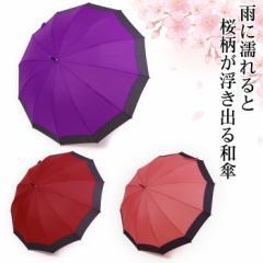 H傘 レディース 12本骨 雨に濡れると桜が浮き出る 浮水桜 ジャンプ傘 55cm 12JCBA 晴雨兼用 和傘 和風傘 雨傘 長傘 かさ カサ UVケア