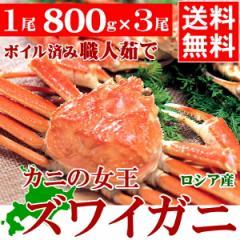 送料無料 ズワイガニ 1尾800g×3尾 2.4kg【海鮮 ...