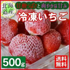 送料無料  産直のため同梱不可 北海道産 冷凍いちご(ヘタなし) 500g  お届け日指定不可