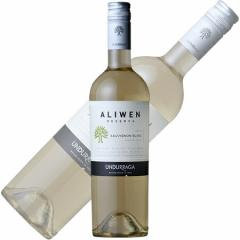 アリウェン レセルバ ソーヴィニヨン・ブラン 2015 750ml 【ウンドラーガ】 白ワイン 辛口【メール便不可】