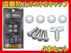 カーメイト ナンバープレートの盗難防止に ボルト+キャップベーシックセット LS312/ 自動車