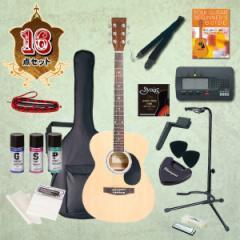 【送料無料/代引不可】 フォークギター入門セット HONEYBEE (ハニービー) アコースティックギター 初心者入門セット 16点 F15