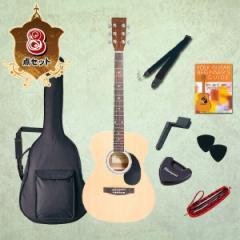 【送料無料/代引不可】 フォークギター入門セット HONEYBEE (ハニービー) アコースティックギター 初心者入門セット 8点 F15