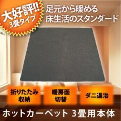 【送料無料】ホットカーペット 3畳 本体 折り畳み収納可能 TEKNOS テクノス 電気カーペット 電気暖房 TWA-3000B 暖房面積切換 ダニ退治